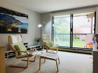 "Photo 9: 215 8400 LANSDOWNE Road in Richmond: Brighouse Condo for sale in ""LEXINGTON SQUARE"" : MLS®# R2261014"