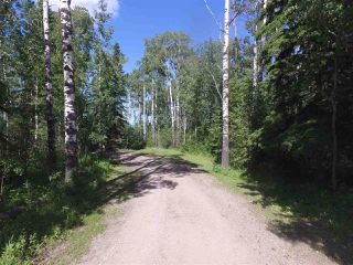 Photo 18: 453071 Hwy 771: Rural Wetaskiwin County House for sale : MLS®# E4144552