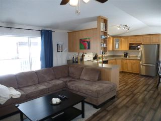 Photo 5: 453071 Hwy 771: Rural Wetaskiwin County House for sale : MLS®# E4144552