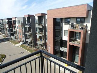 Photo 21: 415 1004 ROSENTHAL Boulevard NW in Edmonton: Zone 58 Condo for sale : MLS®# E4150286