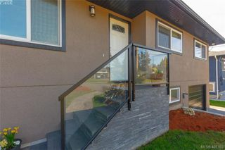 Photo 2: 1035 Nicholson St in VICTORIA: SE Lake Hill House for sale (Saanich East)  : MLS®# 810358