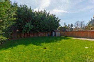 Photo 32: 1035 Nicholson St in VICTORIA: SE Lake Hill House for sale (Saanich East)  : MLS®# 810358