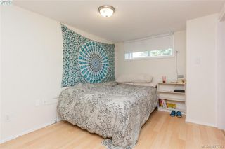Photo 28: 1035 Nicholson St in VICTORIA: SE Lake Hill House for sale (Saanich East)  : MLS®# 810358