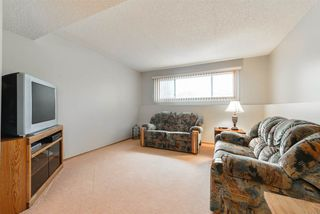 Photo 20: 4604 56 Avenue: Stony Plain House for sale : MLS®# E4155738
