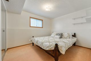 Photo 25: 4604 56 Avenue: Stony Plain House for sale : MLS®# E4155738