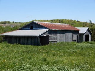 Photo 2: 119 Lorne Road in Glengarry: 108-Rural Pictou County Farm for sale (Northern Region)  : MLS®# 201914700