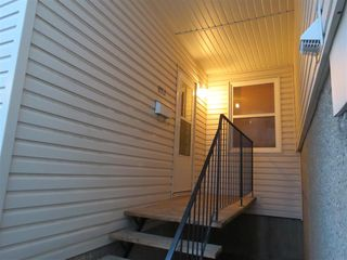 Photo 3: 8512 38A Avenue in Edmonton: Zone 29 Carriage for sale : MLS®# E4177521