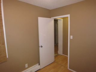 Photo 18: 8512 38A Avenue in Edmonton: Zone 29 Carriage for sale : MLS®# E4177521