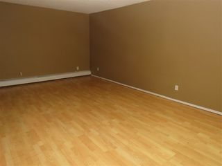 Photo 10: 8512 38A Avenue in Edmonton: Zone 29 Carriage for sale : MLS®# E4177521