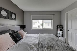 Photo 24: 47 10909 106 Street in Edmonton: Zone 08 Townhouse for sale : MLS®# E4204204