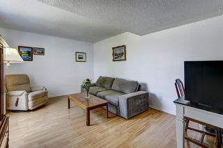 Photo 7: 74 32 WHITNEL Court NE in Calgary: Whitehorn Row/Townhouse for sale : MLS®# A1016839