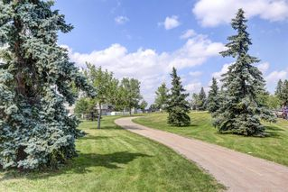 Photo 28: 74 32 WHITNEL Court NE in Calgary: Whitehorn Row/Townhouse for sale : MLS®# A1016839