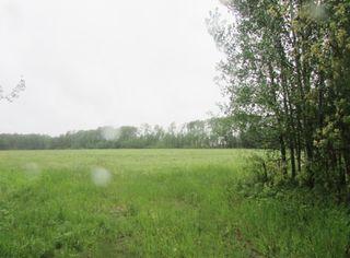 "Photo 4: 17507 SIPHON CREEK Road in Fort St. John: Fort St. John - Rural E 100th Land for sale in ""OSBORN"" (Fort St. John (Zone 60))  : MLS®# N244479"