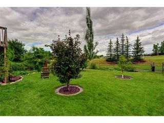 Photo 22: 48 RIVERVIEW Close SE in Calgary: Riverbend House for sale : MLS®# C4019048