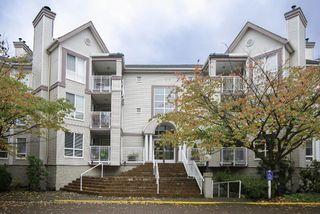 """Photo 1: 214 7453 MOFFATT Road in Richmond: Brighouse South Condo for sale in """"COLONY BAY"""" : MLS®# R2117607"""