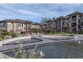 "Photo 31: 103 15145 36 Avenue in Surrey: Morgan Creek Condo for sale in ""EDGEWATER"" (South Surrey White Rock)  : MLS®# R2145908"