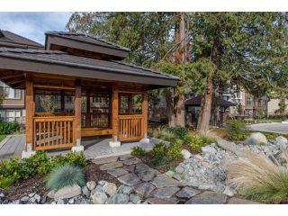 "Photo 32: 103 15145 36 Avenue in Surrey: Morgan Creek Condo for sale in ""EDGEWATER"" (South Surrey White Rock)  : MLS®# R2145908"