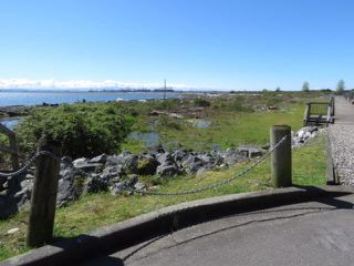 Photo 10: 222 1120 TSATSU SHORES Drive in Delta: English Bluff Condo for sale (Tsawwassen)  : MLS®# R2159556