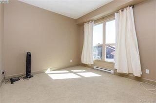 Photo 12: 206 1642 McKenzie Avenue in VICTORIA: SE Lambrick Park Condo Apartment for sale (Saanich East)  : MLS®# 383197