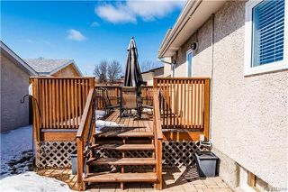 Photo 17: 495 Paddington Road in Winnipeg: River Park South Residential for sale (2F)  : MLS®# 1808177