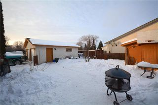 Photo 18: 157 Skowron Crescent in Winnipeg: Harbour View South Residential for sale (3J)  : MLS®# 1901112