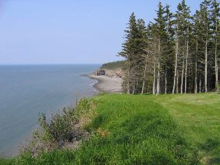 Photo 4: Lot 16 /17 Augsburger Street in Victoria Harbour: 404-Kings County Vacant Land for sale (Annapolis Valley)  : MLS®# 201902462