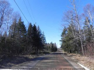 Photo 7: Lot 16 & 17 Augsburger Street in Victoria Harbour: 404-Kings County Vacant Land for sale (Annapolis Valley)  : MLS®# 201902462