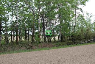 Photo 1: 55318 RR 231: Rural Sturgeon County Rural Land/Vacant Lot for sale : MLS®# E4145087