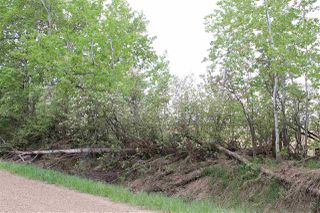 Photo 2: 55318 RR 231: Rural Sturgeon County Rural Land/Vacant Lot for sale : MLS®# E4145087