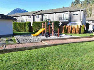 "Photo 19: 7 2401 MAMQUAM Road in Squamish: Garibaldi Highlands Townhouse for sale in ""Highland Glen"" : MLS®# R2346166"