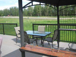 Photo 24: #206 River Ravine Estates: Rural Brazeau County House for sale : MLS®# E4154133