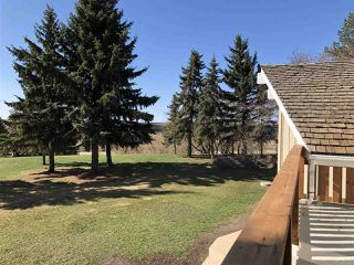 Photo 19: 2 240018 TWP RD 472: Rural Wetaskiwin County House for sale : MLS®# E4154184