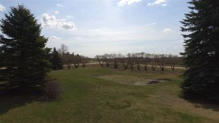Photo 30: 2 240018 TWP RD 472: Rural Wetaskiwin County House for sale : MLS®# E4154184