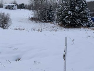 Photo 8: 51 52318 RGE RD 25: Rural Parkland County Rural Land/Vacant Lot for sale : MLS®# E4155950