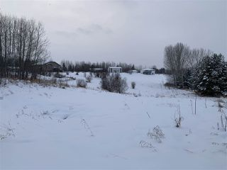 Photo 4: 51 52318 RGE RD 25: Rural Parkland County Rural Land/Vacant Lot for sale : MLS®# E4155950