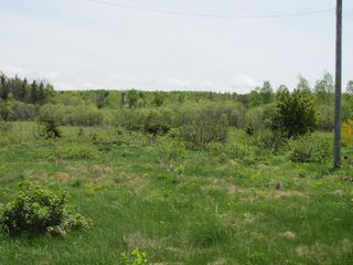 Photo 3: Lot 4 West Halls Harbour Road in Halls Harbour: 404-Kings County Vacant Land for sale (Annapolis Valley)  : MLS®# 201911040