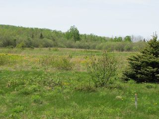 Photo 11: Lot 4 West Halls Harbour Road in Halls Harbour: 404-Kings County Vacant Land for sale (Annapolis Valley)  : MLS®# 201911040
