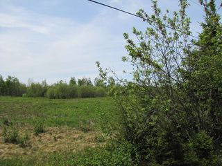 Photo 16: Lot 4 West Halls Harbour Road in Halls Harbour: 404-Kings County Vacant Land for sale (Annapolis Valley)  : MLS®# 201911040