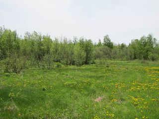 Photo 5: Lot 4 West Halls Harbour Road in Halls Harbour: 404-Kings County Vacant Land for sale (Annapolis Valley)  : MLS®# 201911040