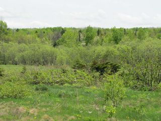 Photo 8: Lot 4 West Halls Harbour Road in Halls Harbour: 404-Kings County Vacant Land for sale (Annapolis Valley)  : MLS®# 201911040