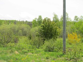 Photo 9: Lot 4 West Halls Harbour Road in Halls Harbour: 404-Kings County Vacant Land for sale (Annapolis Valley)  : MLS®# 201911040