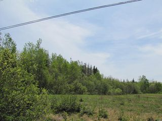 Photo 15: Lot 4 West Halls Harbour Road in Halls Harbour: 404-Kings County Vacant Land for sale (Annapolis Valley)  : MLS®# 201911040