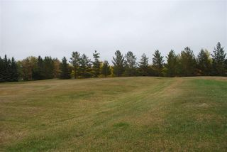 Photo 19: 182 52328 HWY 21: Rural Strathcona County House for sale : MLS®# E4131003