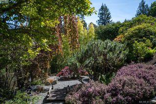 Photo 27: 5012 Georgia Park Terr in VICTORIA: SE Cordova Bay House for sale (Saanich East)  : MLS®# 819349