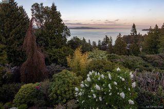 Photo 24: 5012 Georgia Park Terrace in VICTORIA: SE Cordova Bay Single Family Detached for sale (Saanich East)  : MLS®# 413162