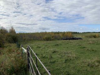 Photo 7: 53128 RGE RD 34: Rural Parkland County Rural Land/Vacant Lot for sale : MLS®# E4174450