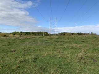 Photo 4: 53128 RGE RD 34: Rural Parkland County Rural Land/Vacant Lot for sale : MLS®# E4174450