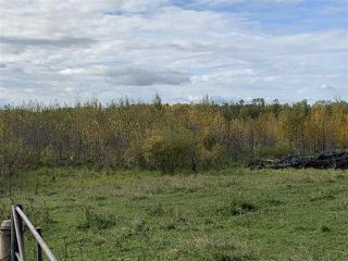Photo 6: 53128 RGE RD 34: Rural Parkland County Rural Land/Vacant Lot for sale : MLS®# E4174450