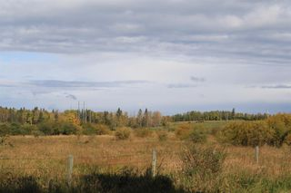 Photo 21: 53128 RGE RD 34: Rural Parkland County Rural Land/Vacant Lot for sale : MLS®# E4174450