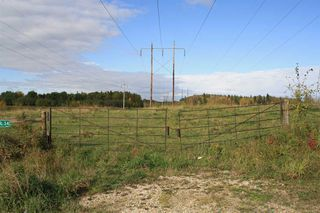 Photo 17: 53128 RGE RD 34: Rural Parkland County Rural Land/Vacant Lot for sale : MLS®# E4174450